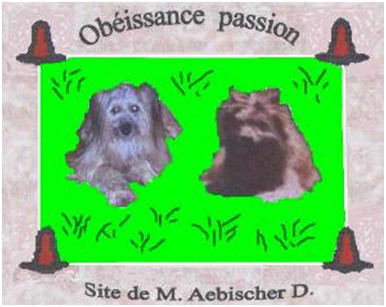 logo abisher