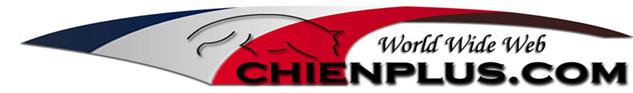 logo chien plus